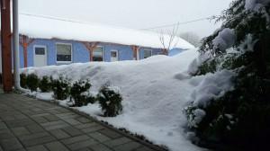 Záhrada v zime